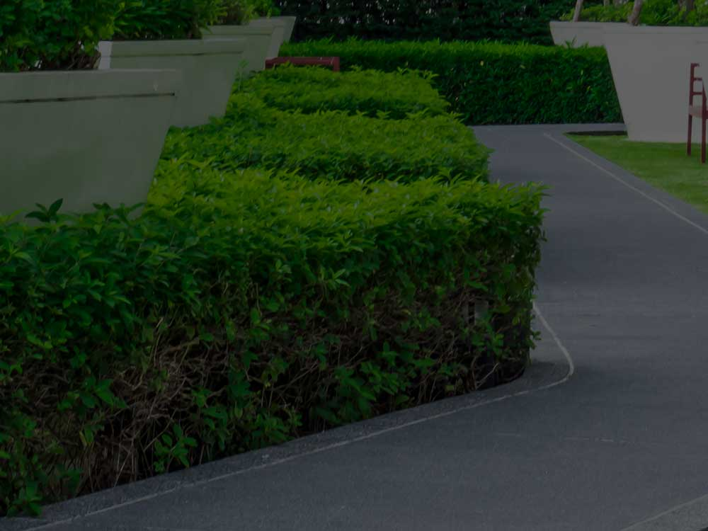 Beachwood Commercial Landscaping