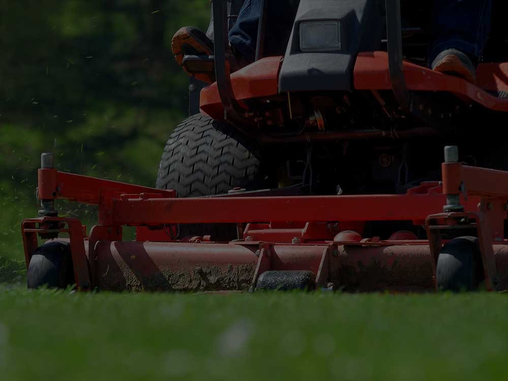 Mentor Commercial Lawn Mowing