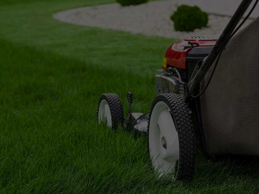 Cleveland Lawn Mowing