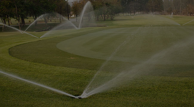 Mentor Irrigation